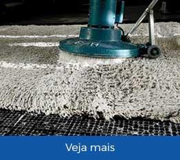 Lavagem e higienizacao de tapetes em São Paulo